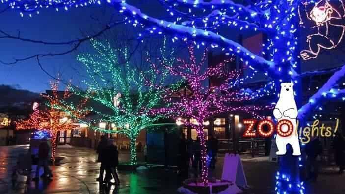 Hogle Zoo - Zoo Lights Henry\u0027s Club Pinterest Zoo lights and Utah