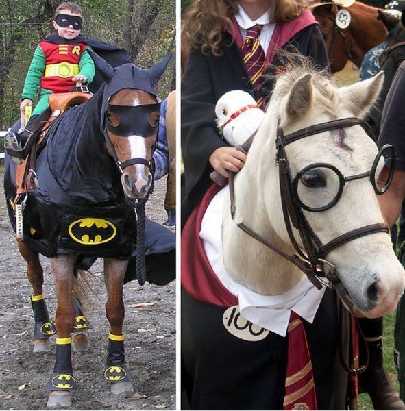Strange Horse Costumes Batman Horse And Harry Potter Horse Horse Halloween Costumes Horse Costumes Pet Costumes