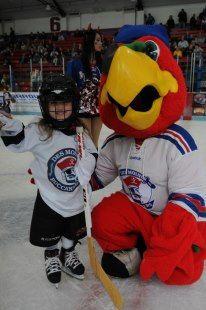 Winger The Des Moines Buc Hockey Mascot Hockey Mascots Hockey