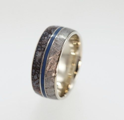 Meteorite Dinosaur Bone Rings Dinosaur bones Wedding and Weddings