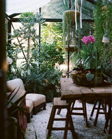 Invernaderos acristalados llenos de plantas, un placer para los ...