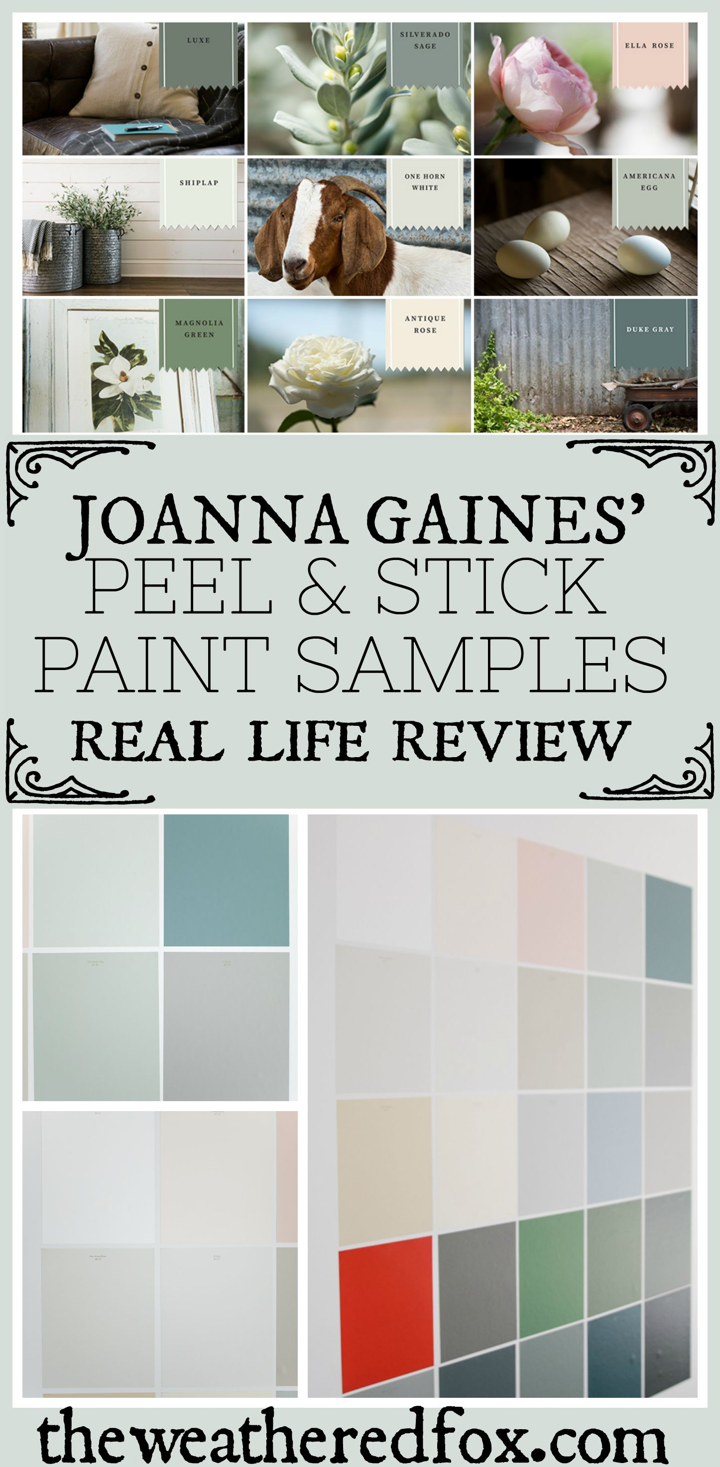 I Tried Peel And Stick Magnolia Home Paint Samples Here S What Happened The Weathered Fox Magnolia Homes Paint Fixer Upper Paint Colors Fixer Upper Paint