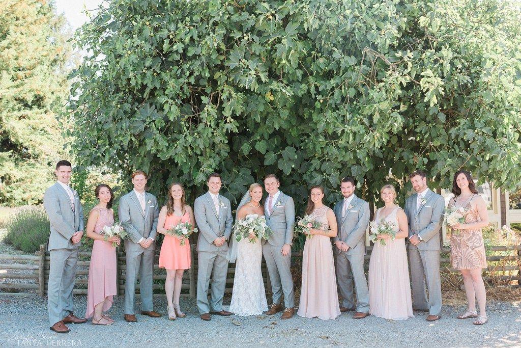 Mismatched Bridesmaids Mismatched Bridesmaid Dresses Blush Bridesmaid Dresses Light Grey Groomsmen Suits Wedding Vineyard Wedding Blush Bridesmaid Dresses