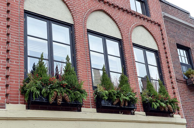 Tall window boxes with Alberta spruce and sugar cones.   Visit www.wisteriaandrose.com for more ideas and inspirations!