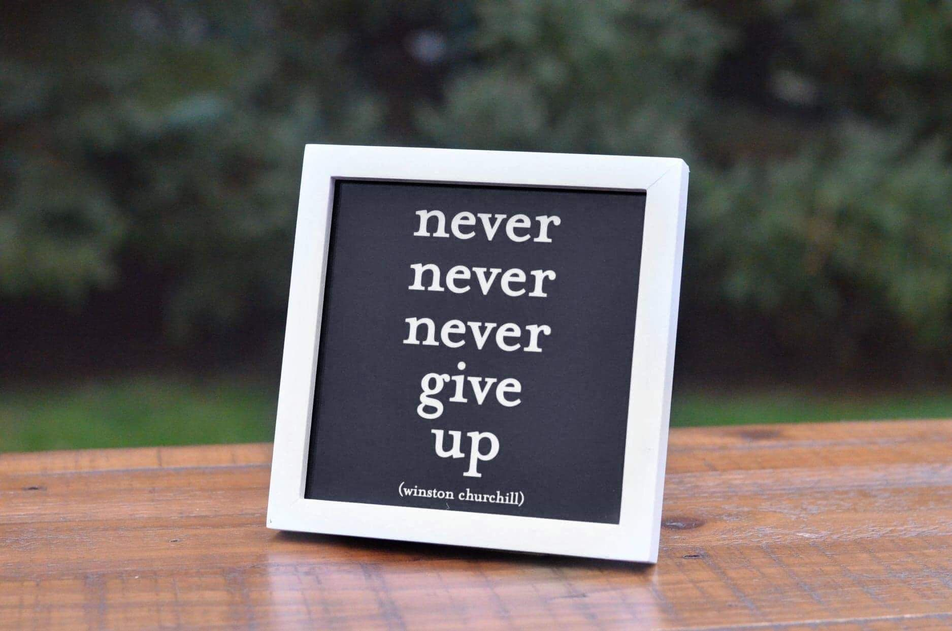 Never Never Never Give Up Framed Quote Framed Quotes Never Give