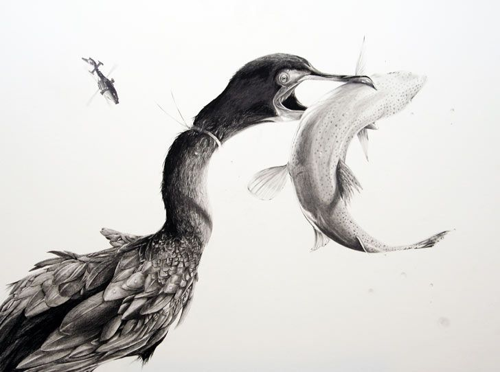 Animals Striking Pencil Drawings