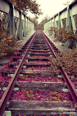 Railroad Wish I Could Do Senior Pictures At A Place Like This