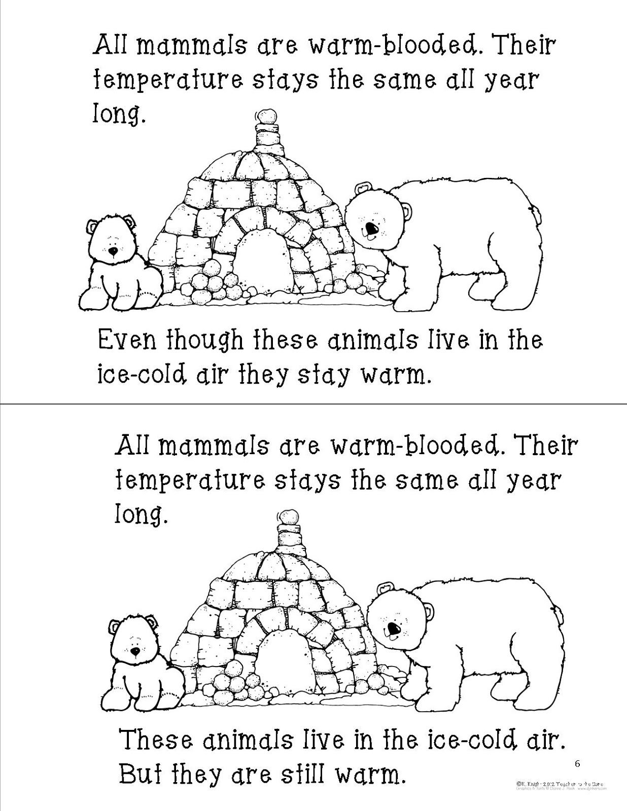Mammals Student Book 3 With Images