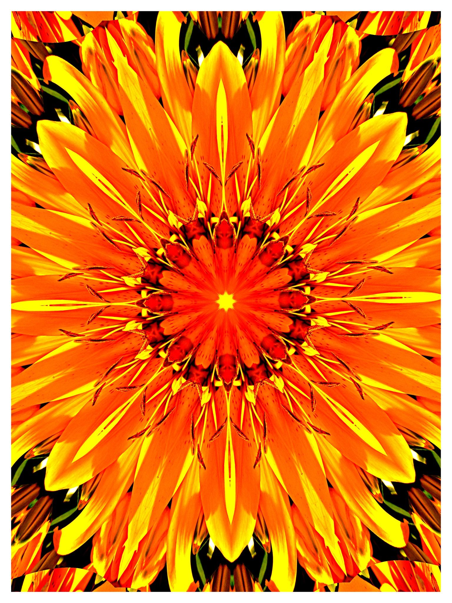 SunSumSol 6.21