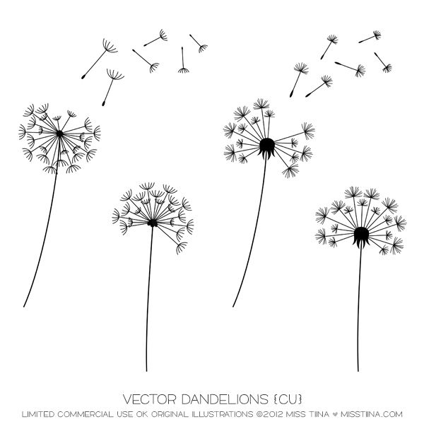 Vector dandelions cu art projects pinterest for Art minimaliste pdf