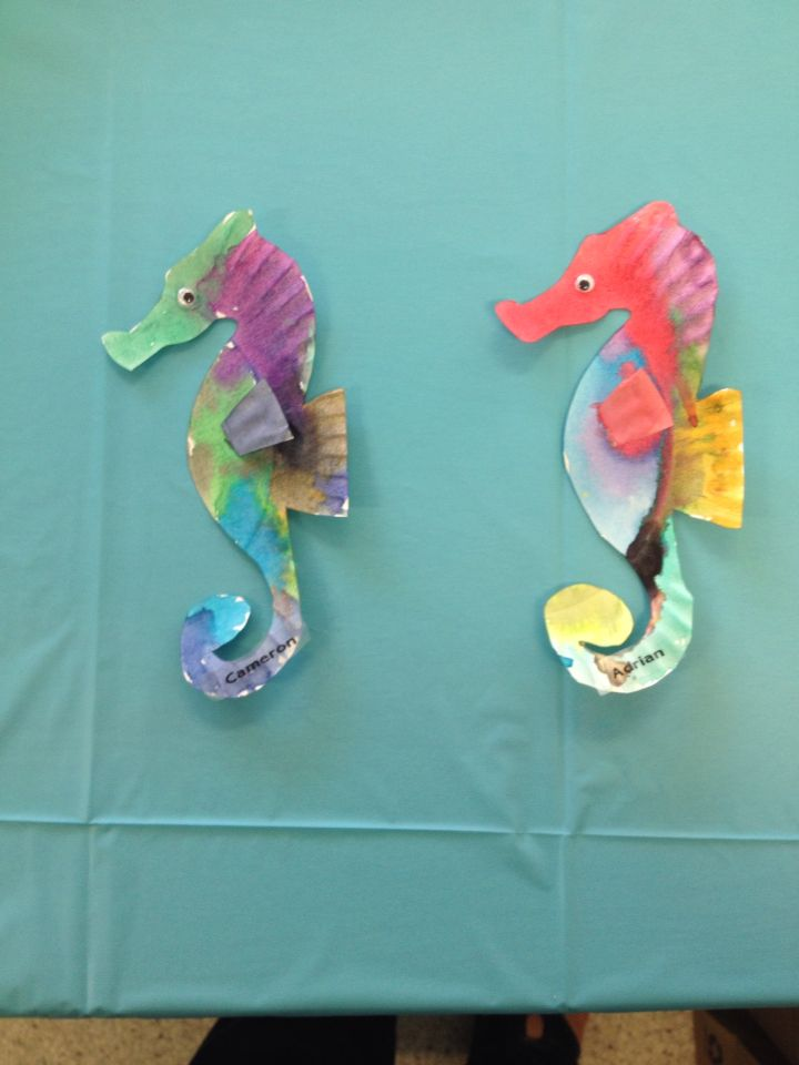 Seahorses made from paper plates. Sea life in the Gulf of Mexico. & Seahorses made from paper plates. Sea life in the Gulf of Mexico ...