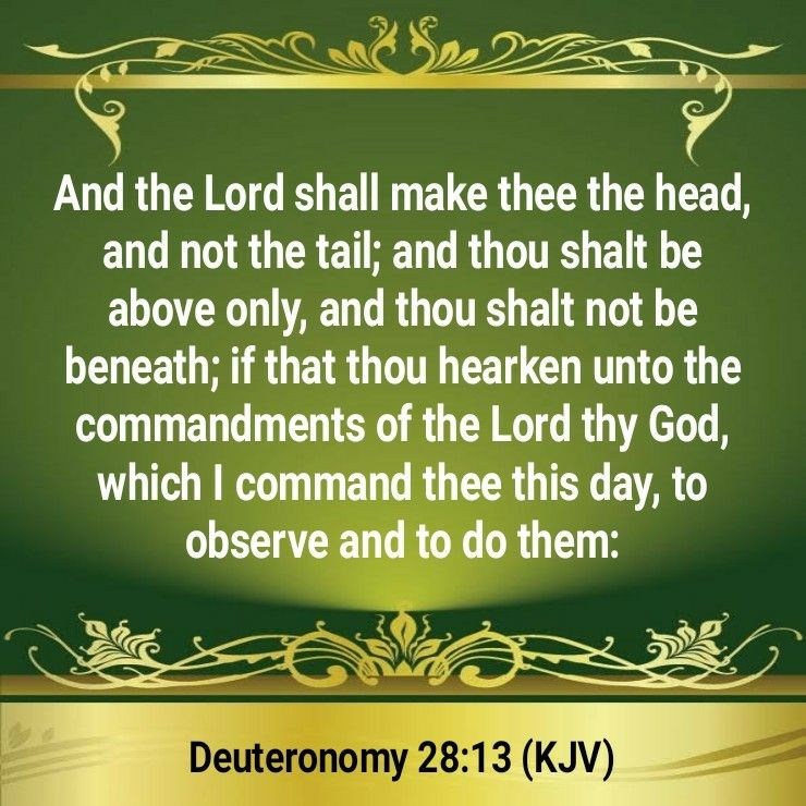 Image result for the head  and not the tail kjv