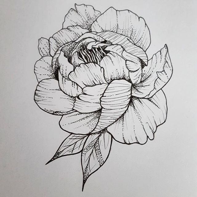 Instagram Photo By Sanne Pols May 30 2016 At 5 02pm Utc Floral Tattoo Drawings Linework