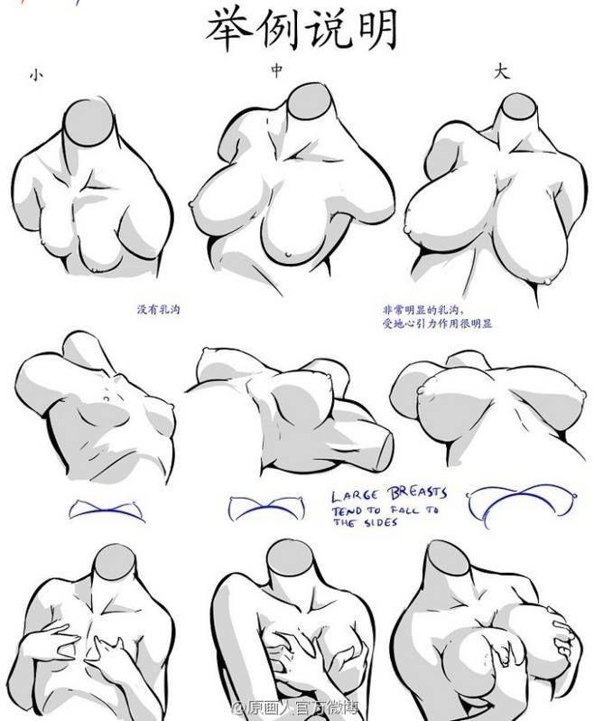 Pin de Marcus Meler en Figures | Pinterest | Anatomía, Dibujo y Bocetos