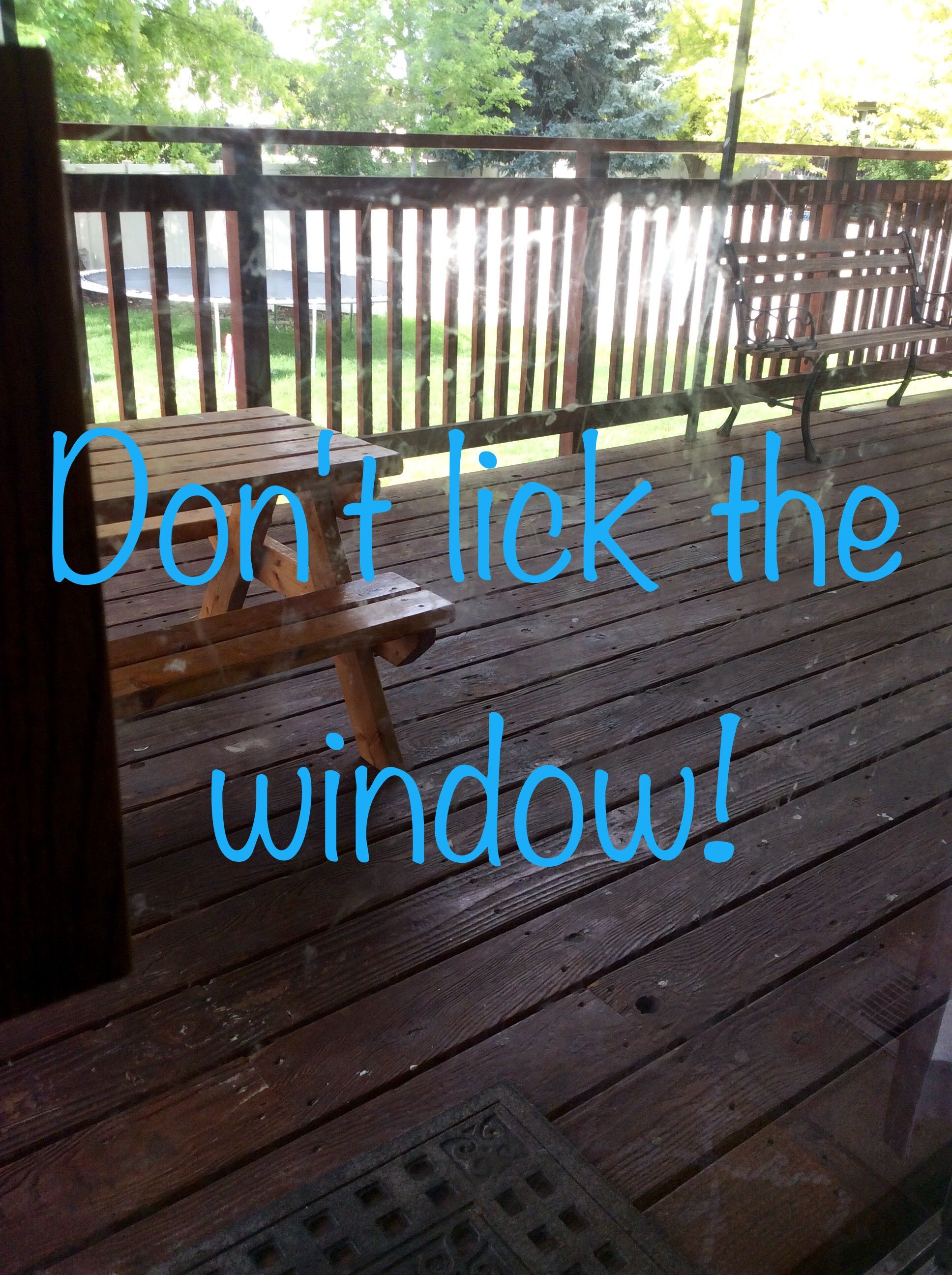 Old window ideas for outside  donut lick the windows