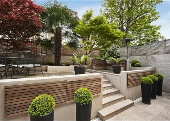 Stylish gardens in Chelsea