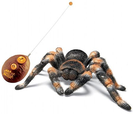 Remote Controlled Tarantula - $24.95 - YIIIKKESSSS! when it creeps across your dorm room. Those light up eyes really make your skin crawl. Furry texture and realistic presence makes it seem like the real thing! Hilarious and horrible gift perfect for the college dorm!