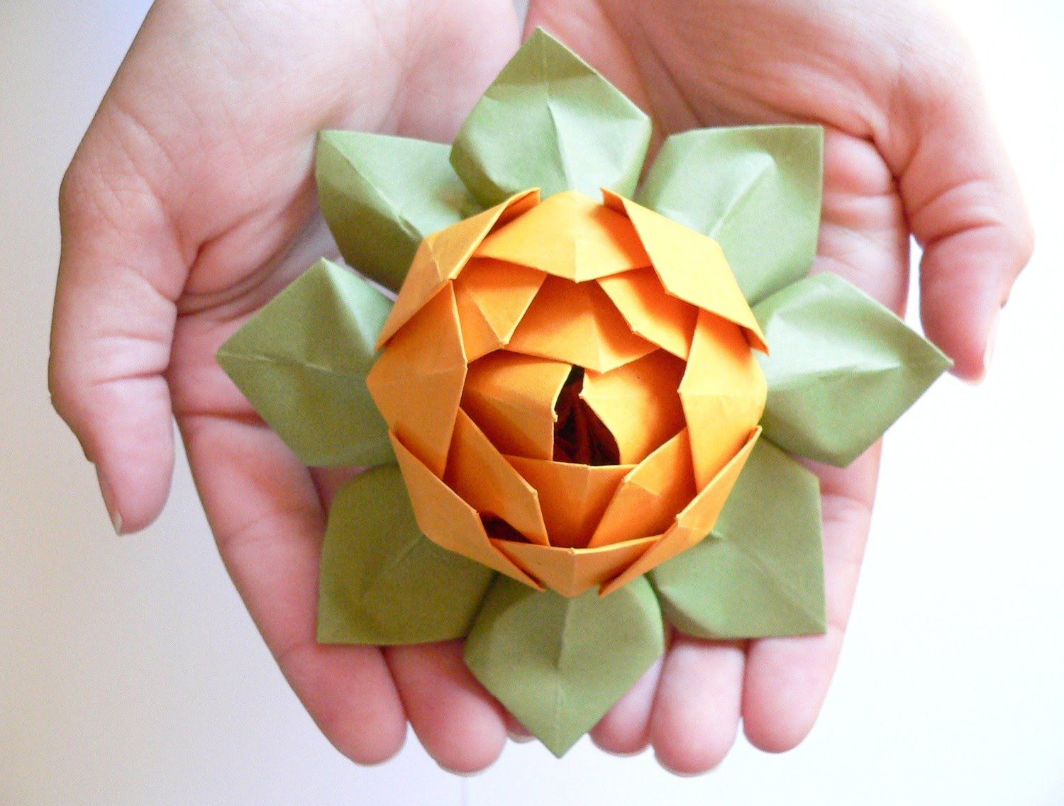 How to make Origami Water Lily Origami world Pinterest