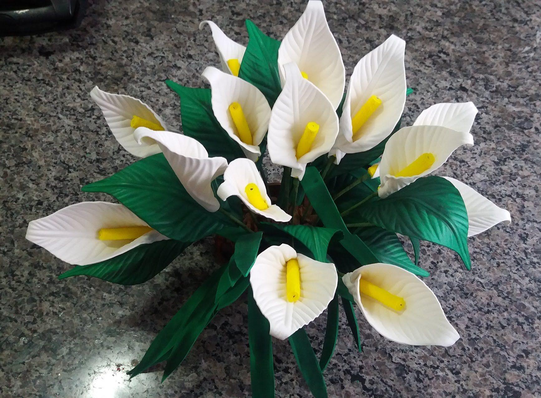 Copo De Leite De Eva Flores Em Eva Flores E Arranjos De Flores