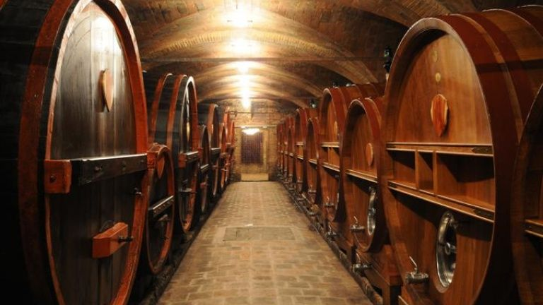 Big barrels in the underground. The cellar is simply marvelous...