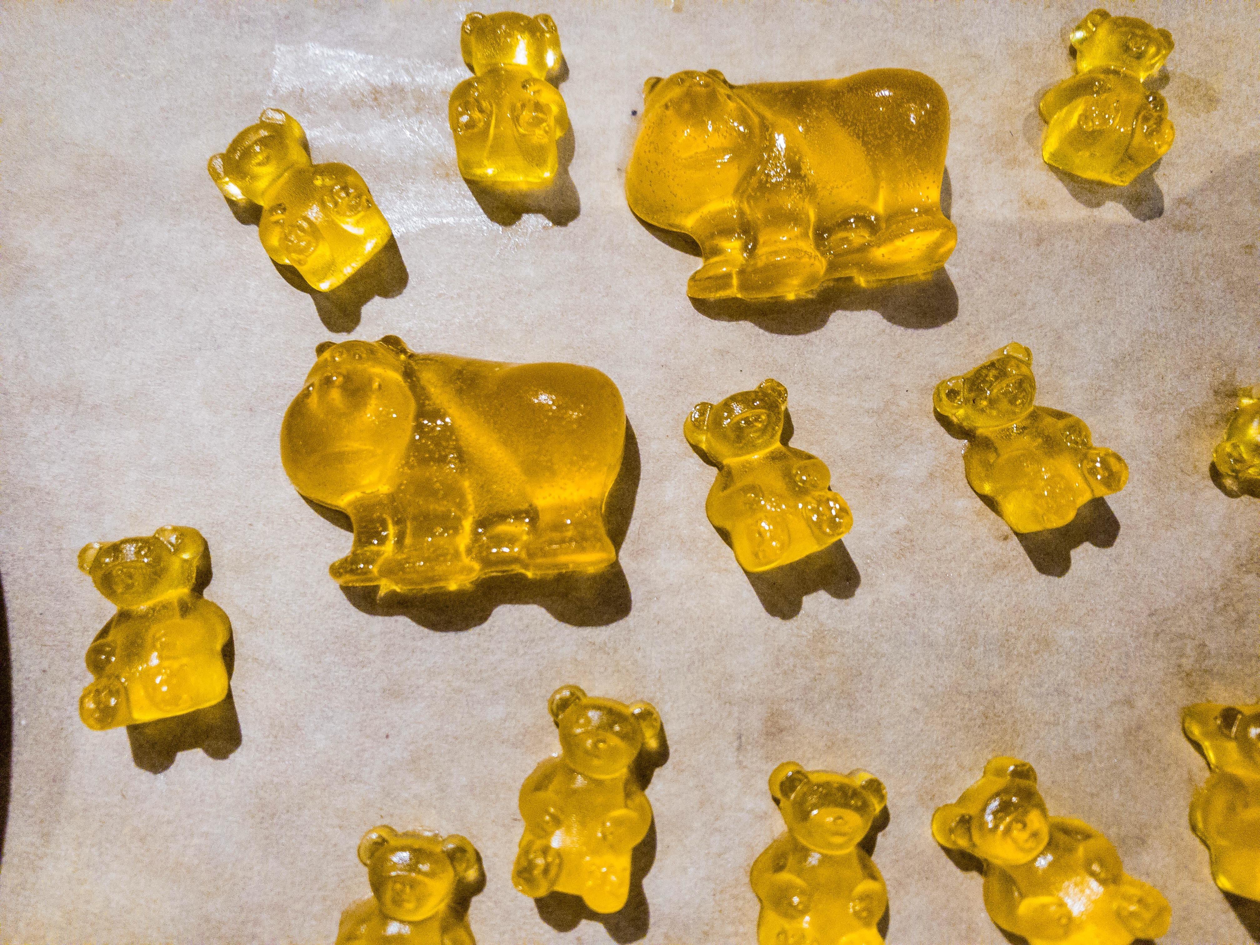Bears Homemade Porn pinenglishteacherchina on aarecipes   gummy bears