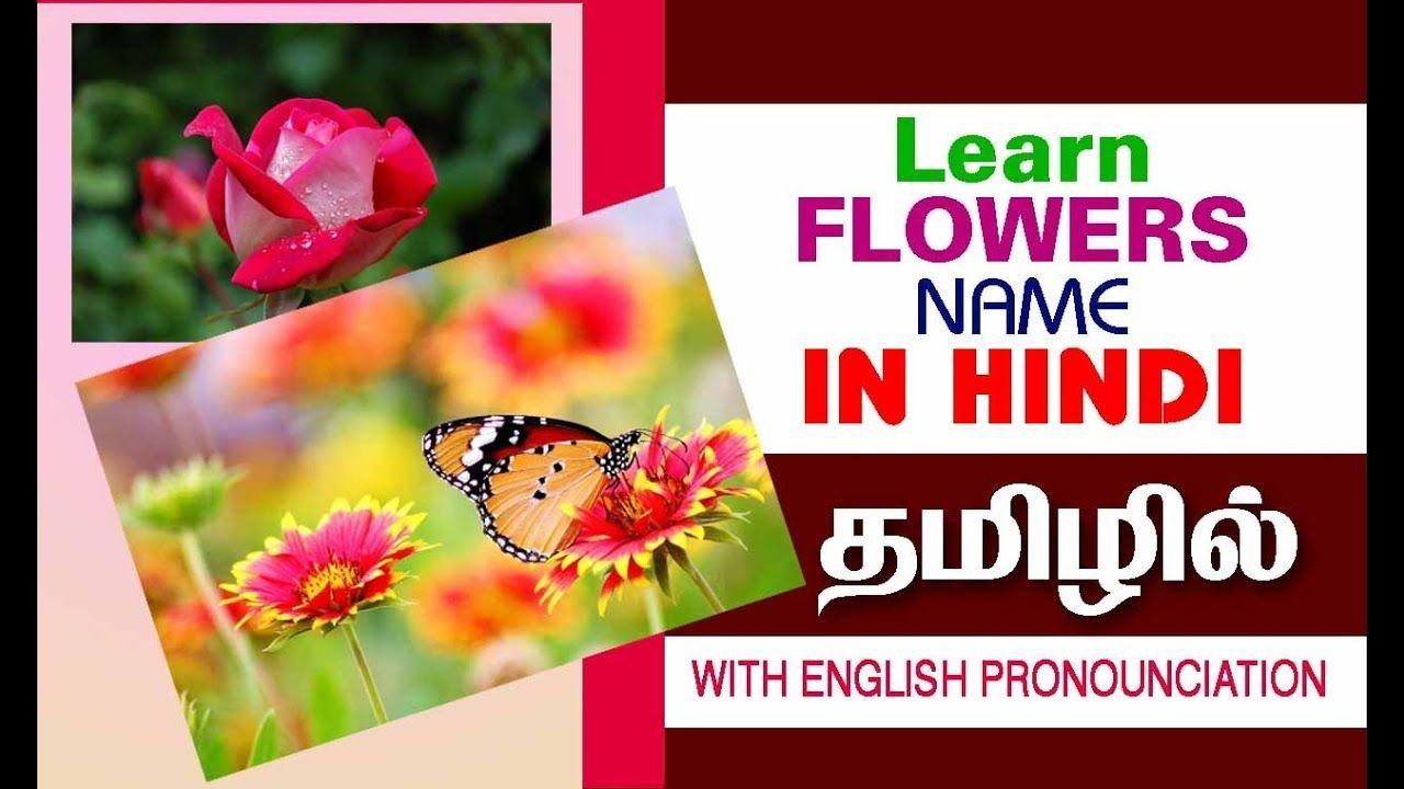 Flowers பூக்கள் Learn Hindi through Tamil & English