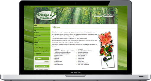 We just released our second website case study for a project we completed for Kim Edmundson of Divine Wellness at http://www.GeckoWebsites.com/website-case-studies/divine-wellness. It provides a more in-depth perspective of how we develop websites. Take a peek behind the scenes to see a bit more of what goes into developing a website!