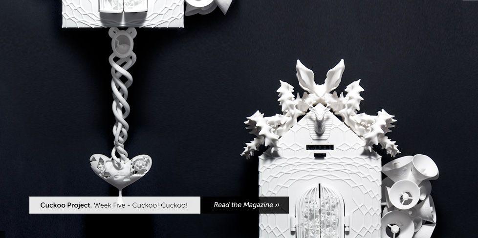 stilnest: the cuckoo project