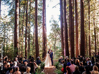 Forest Wedding Venues Redwood Northern California