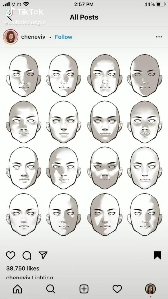 Photo of How to shade faces template