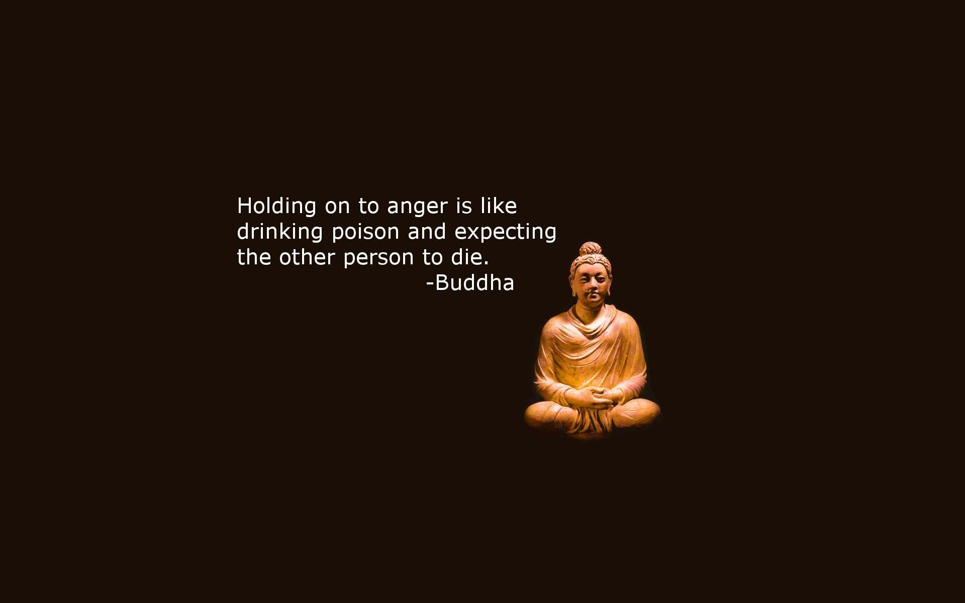 Top Buddha Quotes Hd Wallpapers