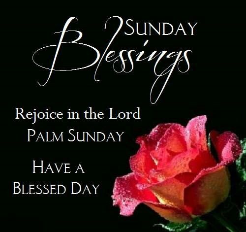 Palm sunday greetings all occasions pinterest palm sunday explore palm sunday devotional quotes and more m4hsunfo