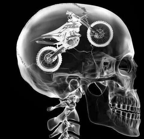 Lebenseinstellung:  Motorräder.