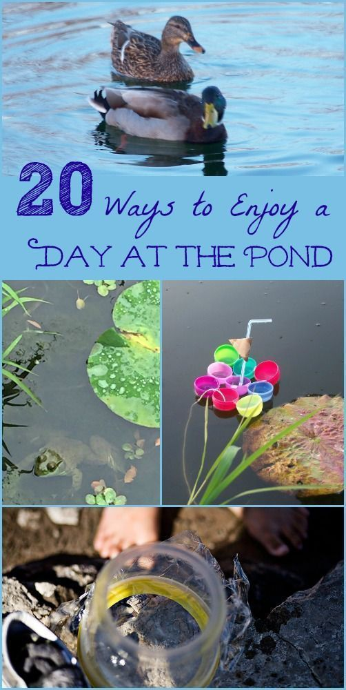 Science, nature and water activities for kids to do at the lake or pond | spring & summer things to do #water #play #kidsactivities #science