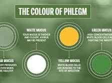 What Your Phlegm Says About Your Health   Mucus color ...