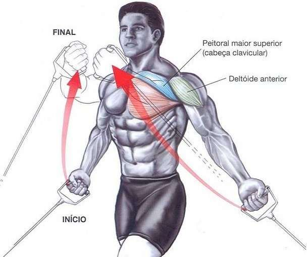 Best Chest Exercises for Mass | Chest Workout | Pinterest ...