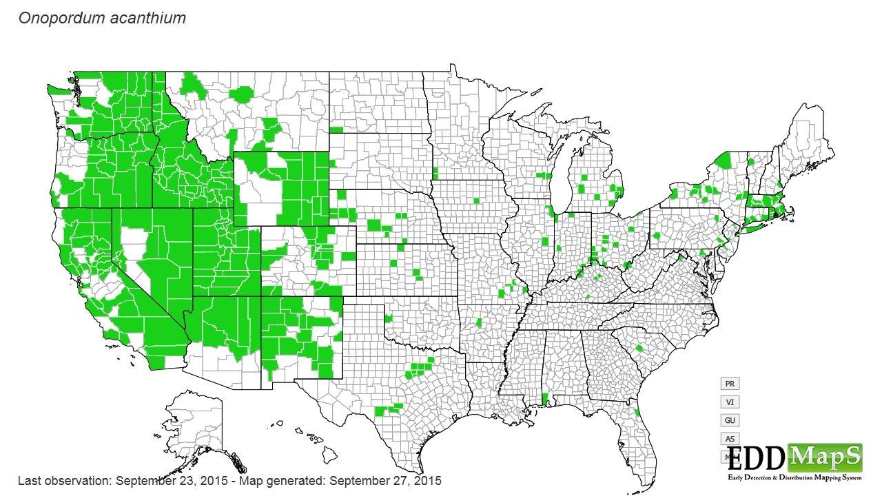 Hydrilla Verticillata Map | www.imgkid.com - The Image Kid ...