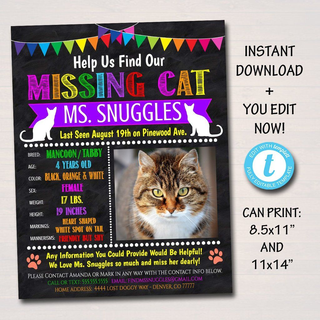 Missing Cat Flyer and Poster Template, Printable Lost Cat