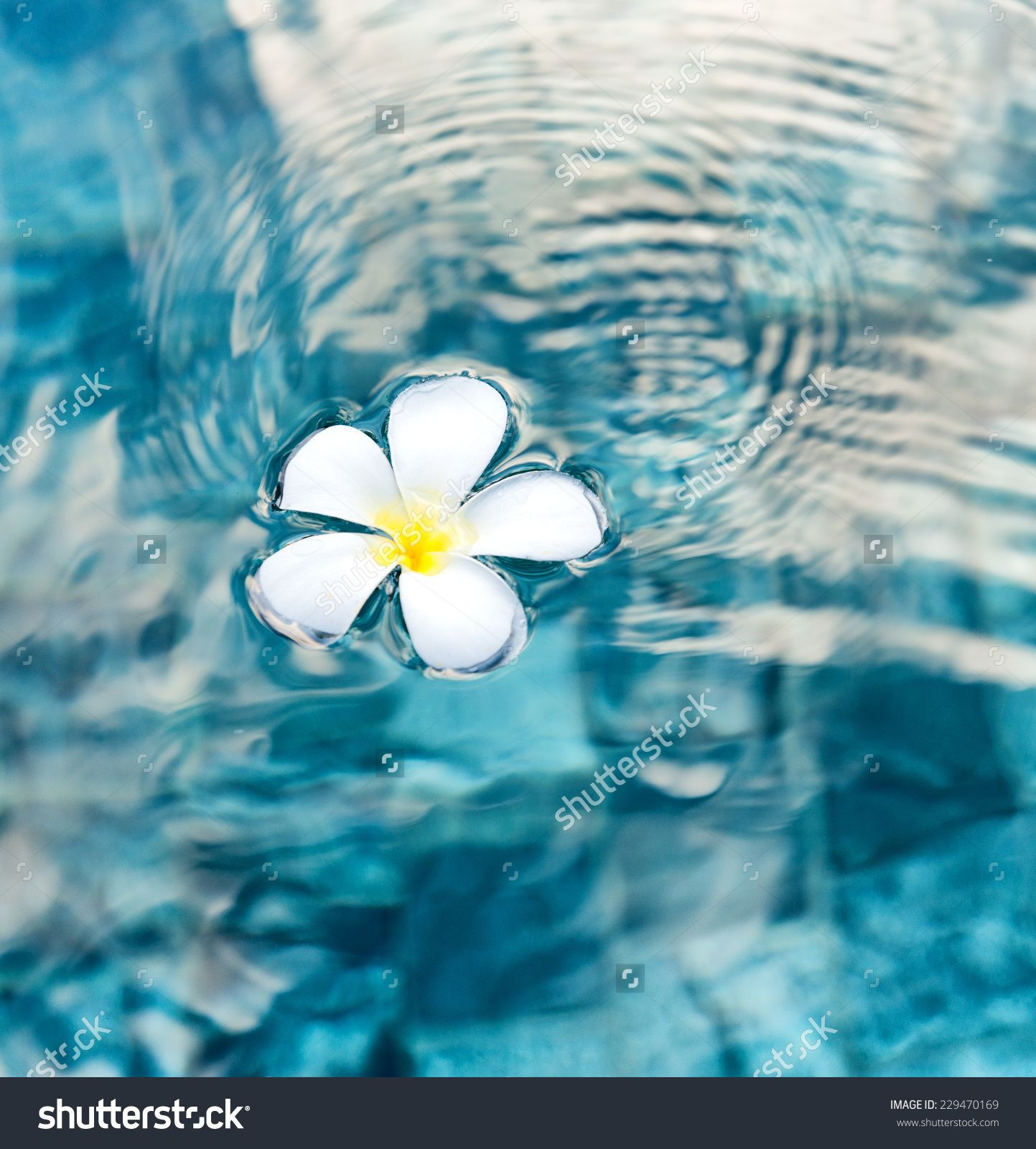 Picture This Photography And Graphics: Peaceful Stock Photos, Images, & Pictures