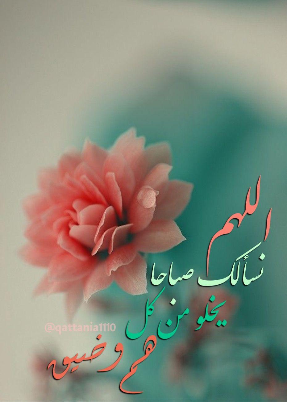 Pin By Skittchen On صباح الخير Goodmorning Good Morning Flowers Morning Images Morning Wish
