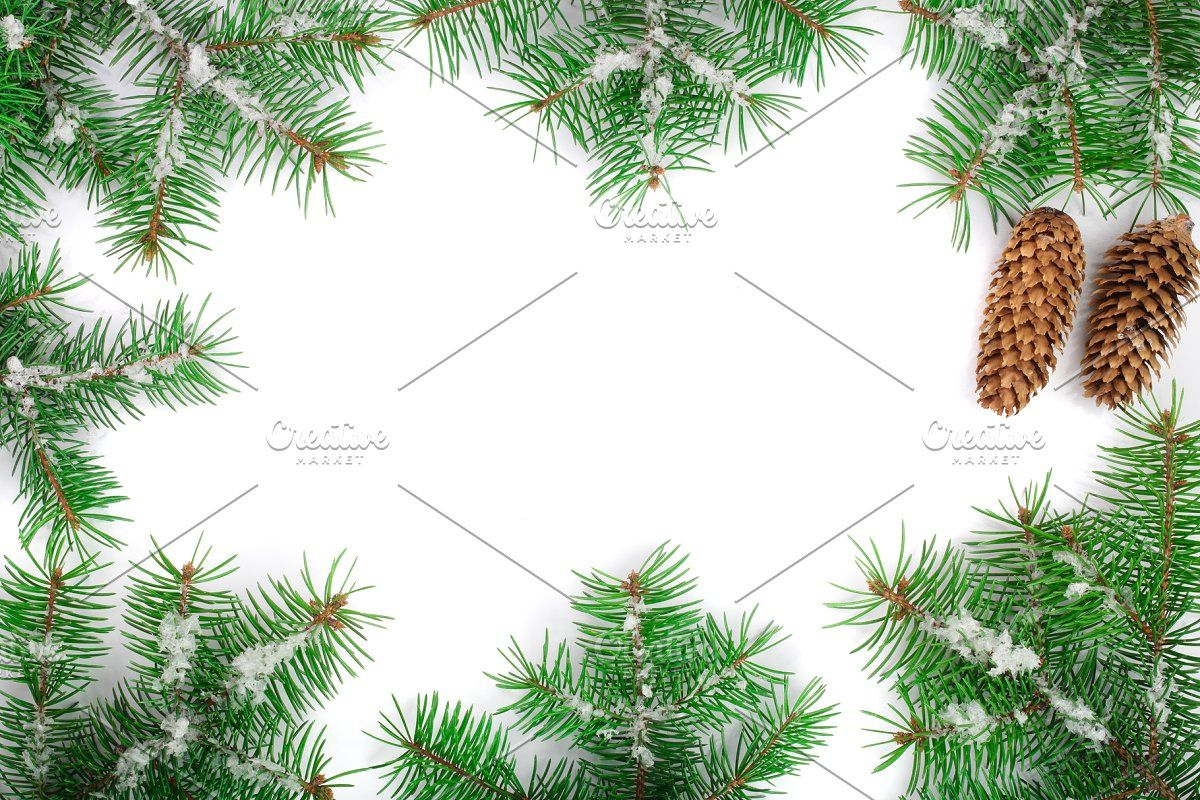 Christmas Frame Of Fir Tree Branch With Snow Isolated On White Background With Copy Space For Your Text Top View In 2020 Christmas Frames Tree Branches Fir Tree
