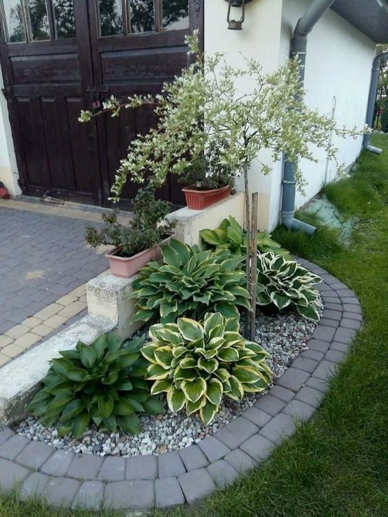 Photo of 24 Stunning Small Front Yard Landscaping Design Ideas