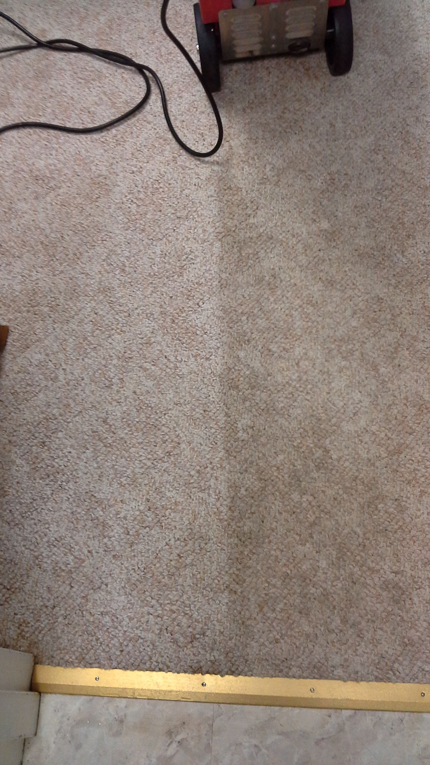 How Well My Carpet Came Clean