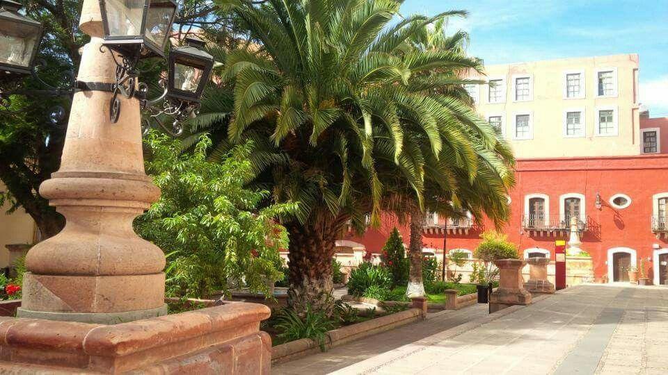 Jardín  Juarez