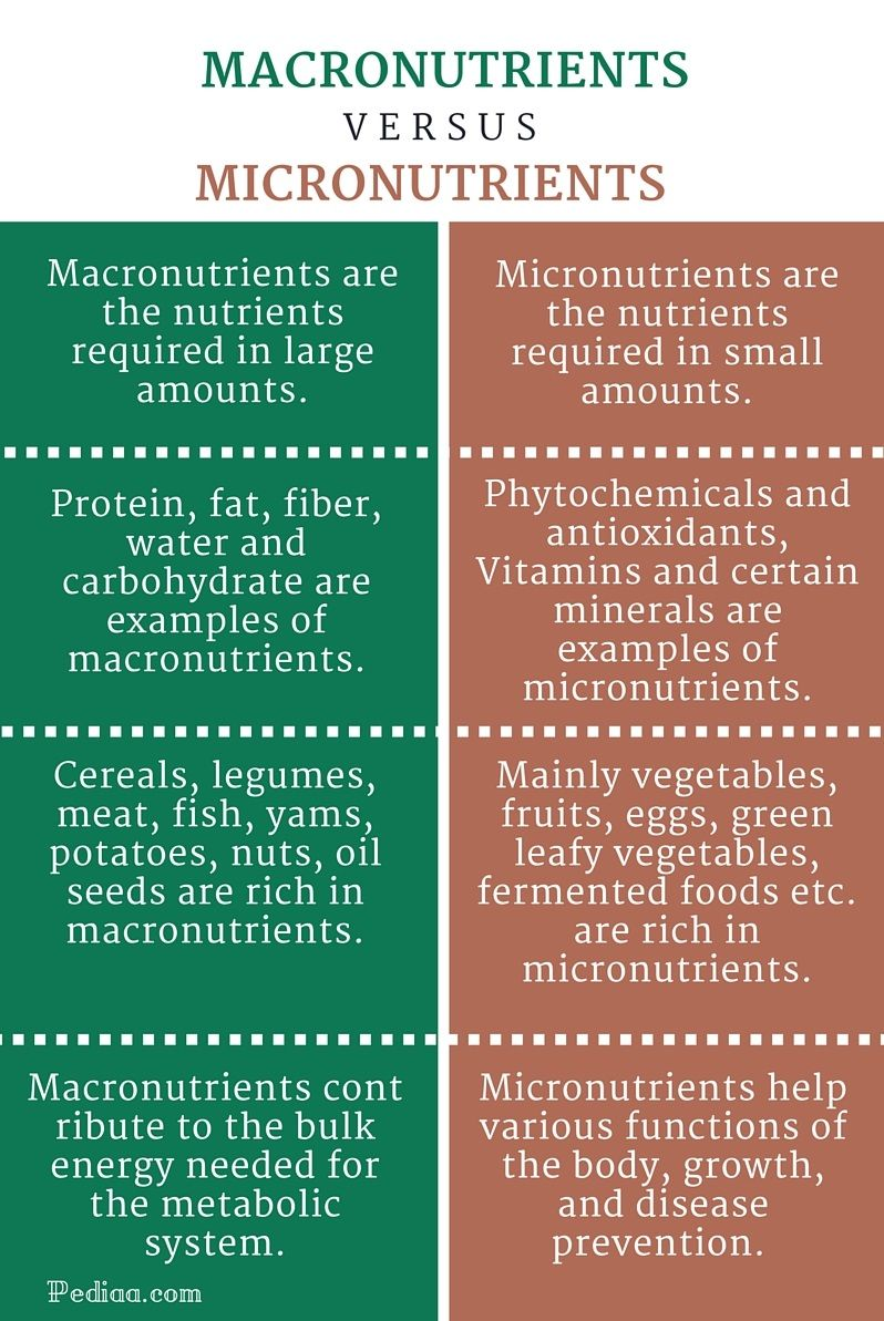 Difference Between Macronutrients And Micronutrients Infographic