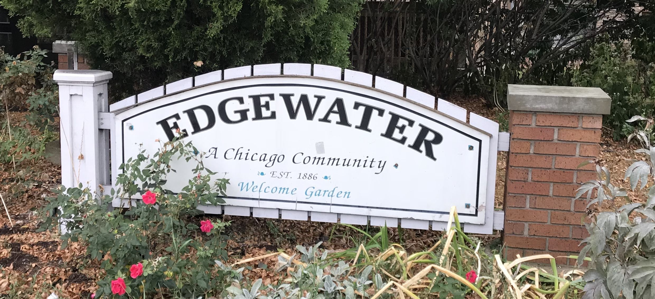 Looking to buy, sell or rent a property in the Edgewater area of ...
