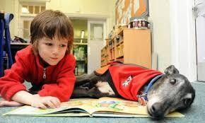 Read to Dogs Nutley, NJ #Kids #Events