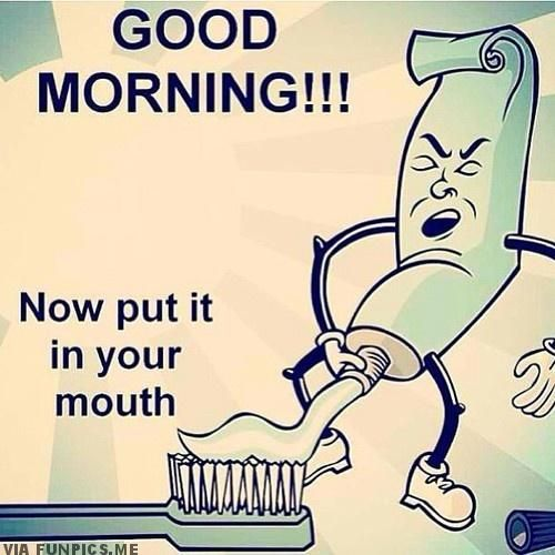 Funny Good Morning Images To Make Your Day Bright My Style Funny