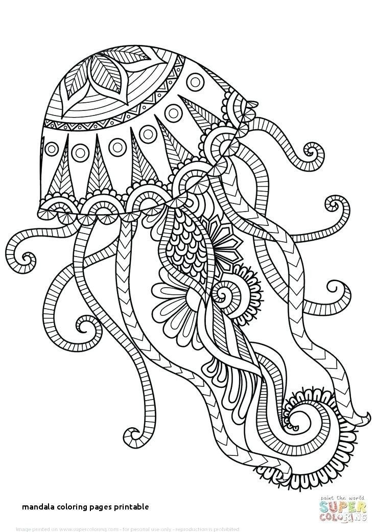 Animal Mandala Coloring Pages Fresh Libro De Colores