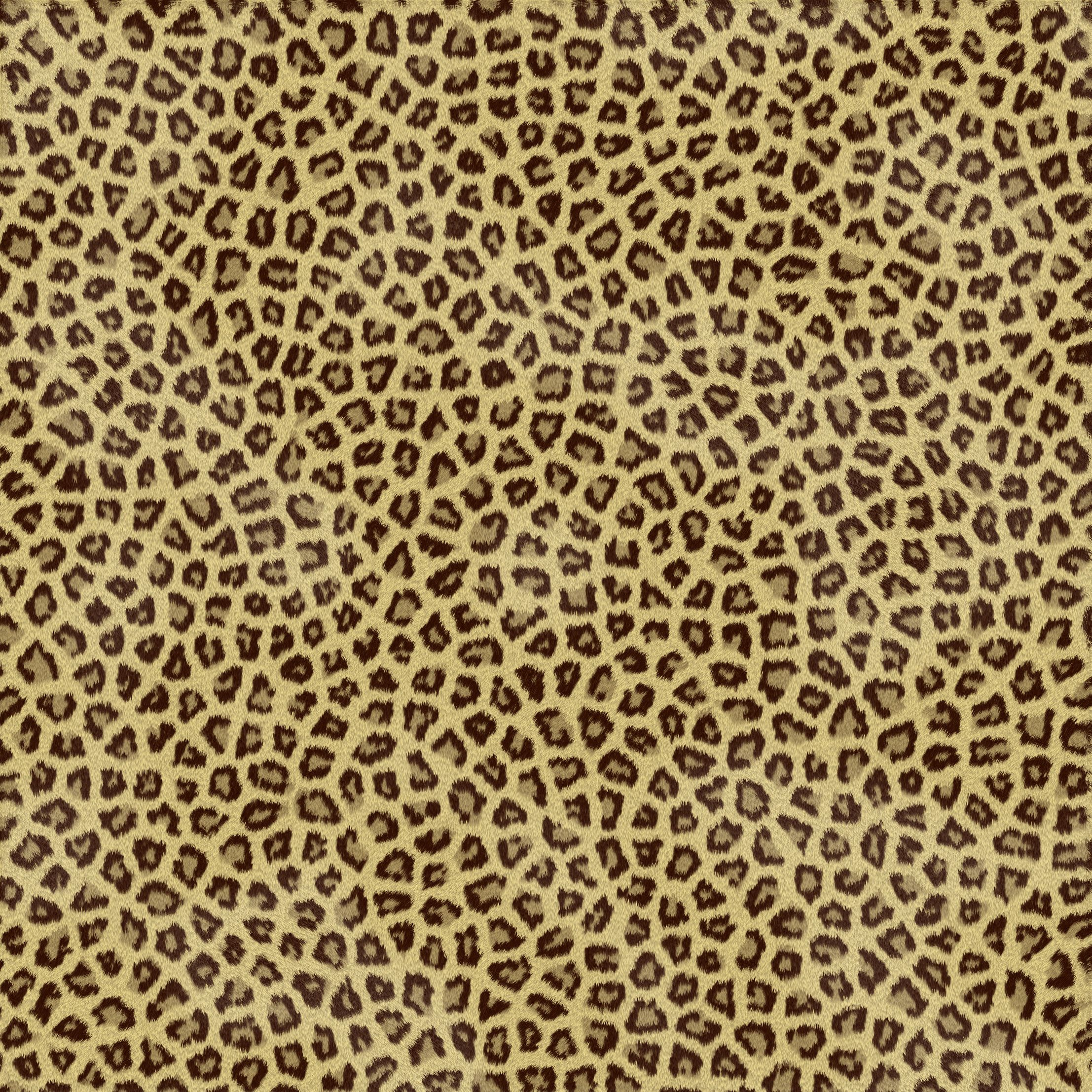 this animal print desktop - photo #7